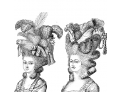 Plaukų priežiūros istorija